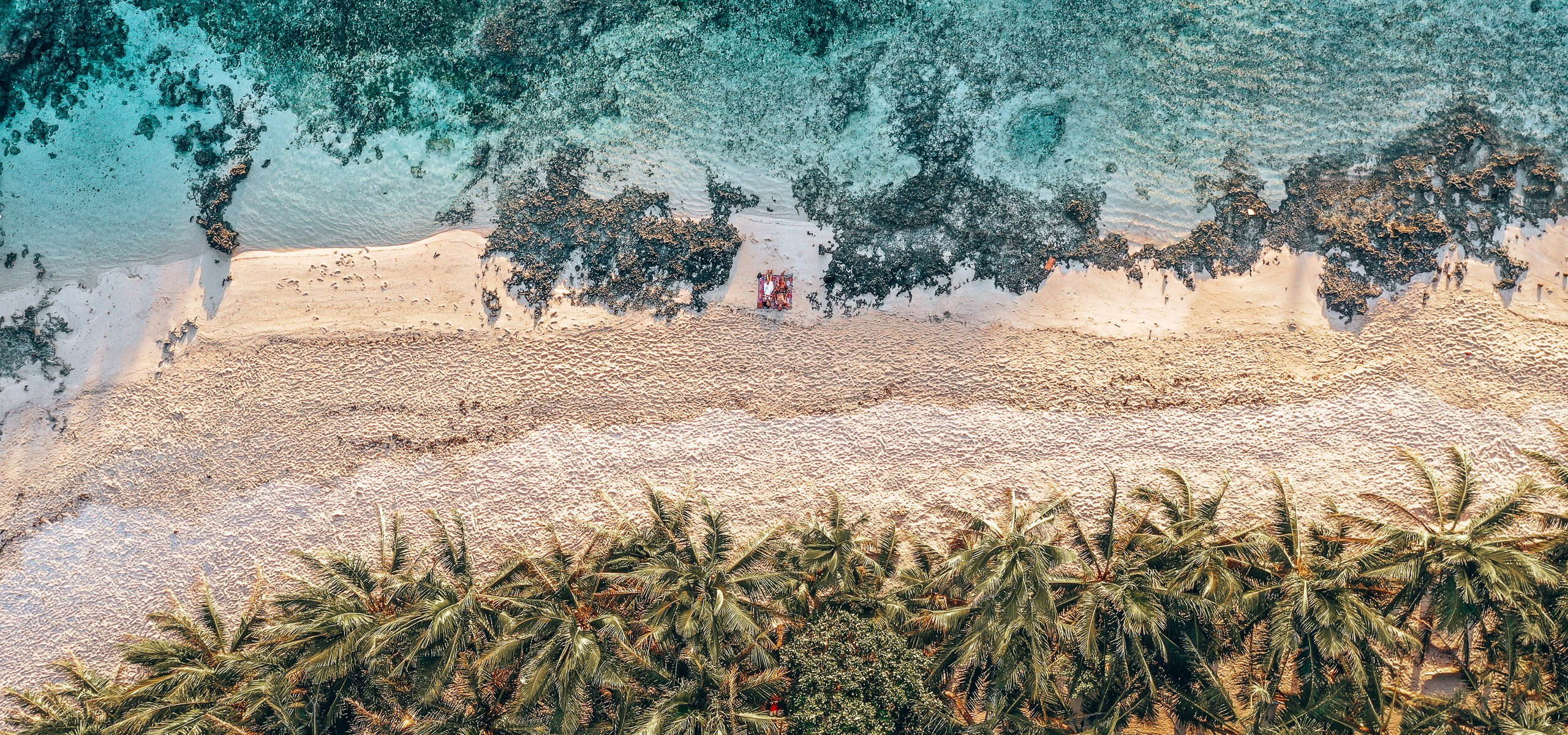 Ocean, sand and palm trees from above - Cloud 9, Siargao