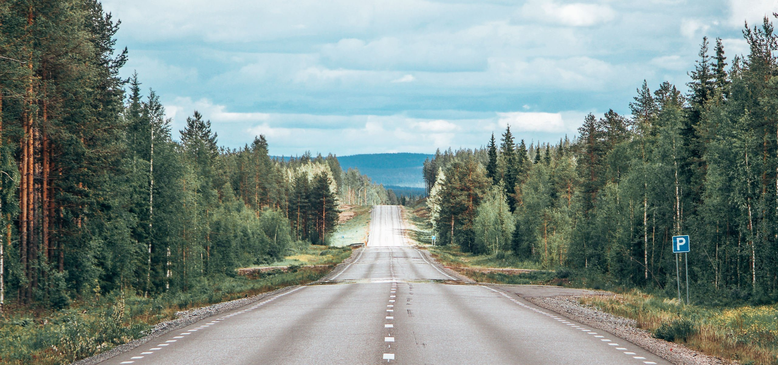 Long stretch of road with pine trees on each side in Scandinavia, Campervan trip