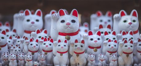 Things To Know Before Going To Japan | Beckoning cats at Gotokuji Temple, Tokyo
