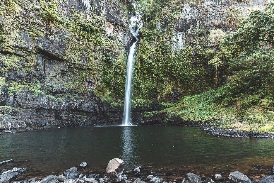 Nandroya Falls | Cairns waterfall circuit, Queensland