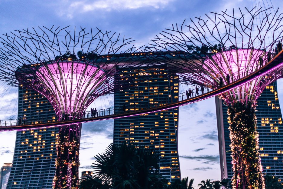 Travel tips for Singapore | Watch the Rhapsody light show at Gardens By The Bay