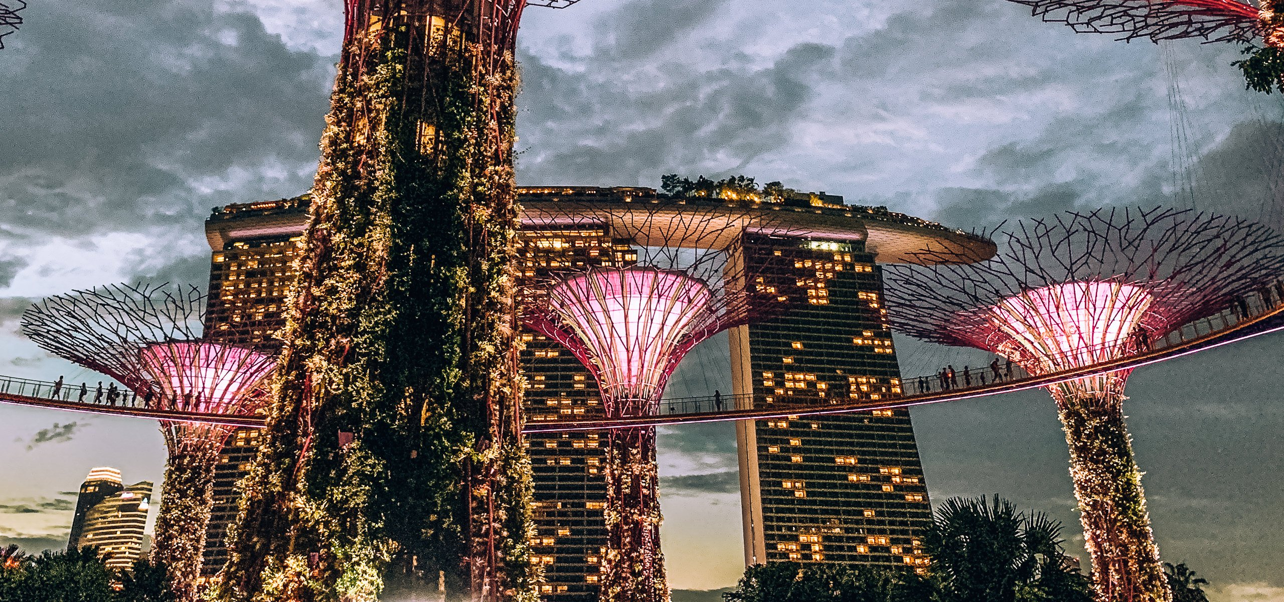 A 3 Day Singapore Itinerary | Gardens By The Bay Light Show
