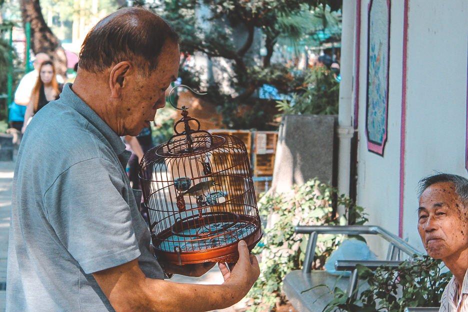 Two elderly gentlemen at the Bird Market, Hong Kong